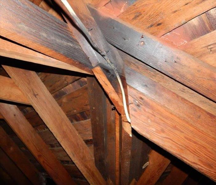 Historical Home Attic Clean up with Dry Ice Before