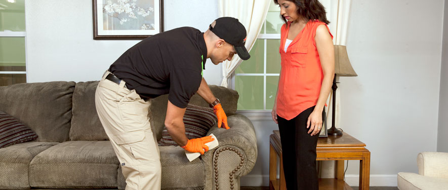 Olympia, WA carpet upholstery cleaning