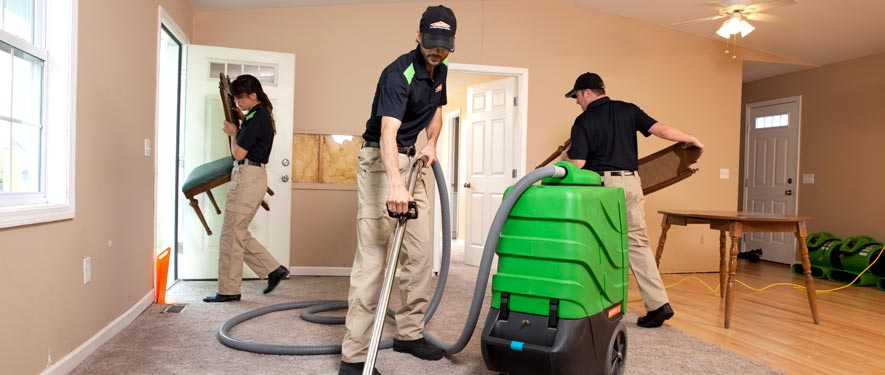 Olympia, WA cleaning services